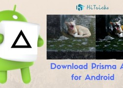 Download Prisma Apk Photo Editor App for Android and Edit Images