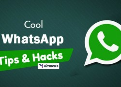 10+ WhatsApp Tricks to Be A Pro WhatsApp User (Must Try These)